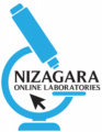 Nizagara Online Laboratories