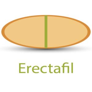 Erectafil - popular treatment for erectile dysfunction